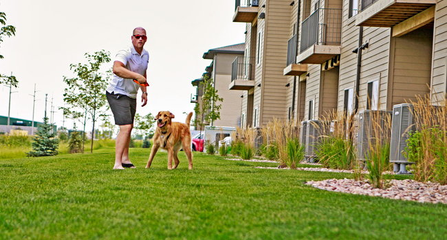 The Sterling Apartments at Kearney - 19 Reviews | Kearney ...