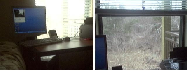 Desk by my bed, and view out my window...