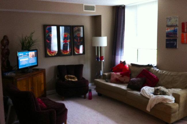 48 Park Center Apartments 48 Reviews Alexandria VA Amazing One Bedroom Apartments In Alexandria Va Decor Collection